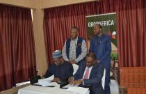 Private Sector Investment is Key in Boosting Nigerian Agriculture